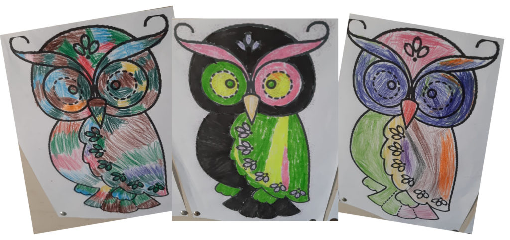 Pictures of owls